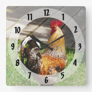 Strutting Rooster Square Wall Clock