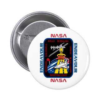 STS 118 Endeavour Pins