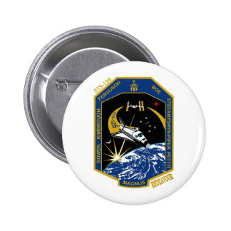 STS 126 Endeavour Pins