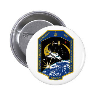 STS 126 Mission Patch Pin