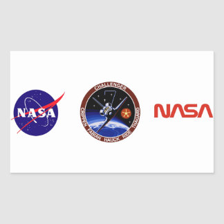 STS-7: Challenger OV-99 & Sally Ride Rectangle Stickers