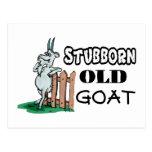 Stubborn Old Goat Postcard