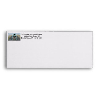 stubby canon water grass background envelopes