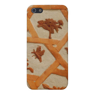 Stucco Flowers iPhone 5 Cases