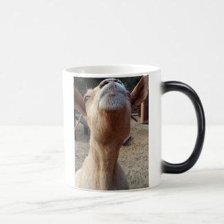Stuck Up Magic Mug