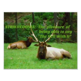"Stud Elk Outdoor ""Strikhedonia"" Hell With it Poster"