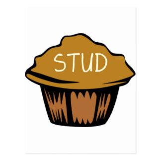 Stud Muffin Cute Postcard