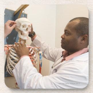 Student doctors studying anatomy on a skeleton coaster