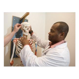 Student doctors studying anatomy on a skeleton postcard