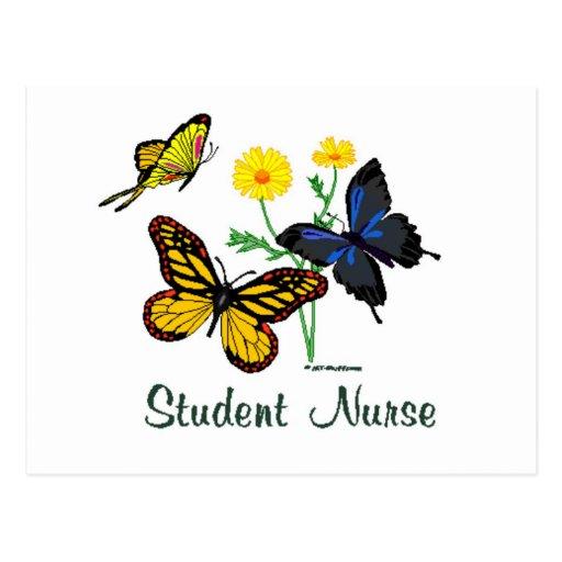 Student Nurse Butterflies Postcard