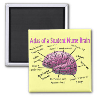 Student Nurse Gifts 2 Inch Square Magnet