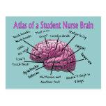 Student Nurse Gifts Postcard