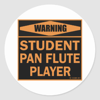 Student Pan Flute Player Classic Round Sticker