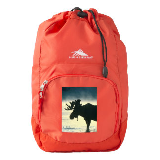 student school education classes learning book backpack