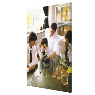 Students in School Chemistry Lab Canvas Print
