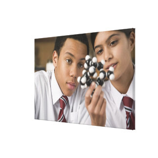 Students looking at molecular model stretched canvas prints