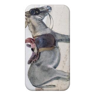 Studies of Animals iPhone 4/4S Case
