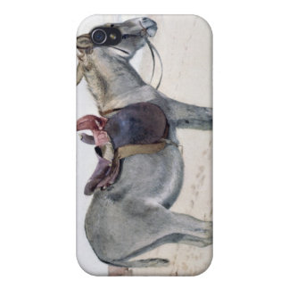 Studies of Animals iPhone 4 Cover