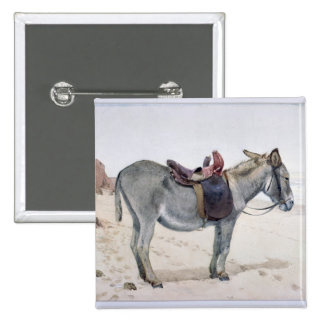 Studies of Animals Pinback Button
