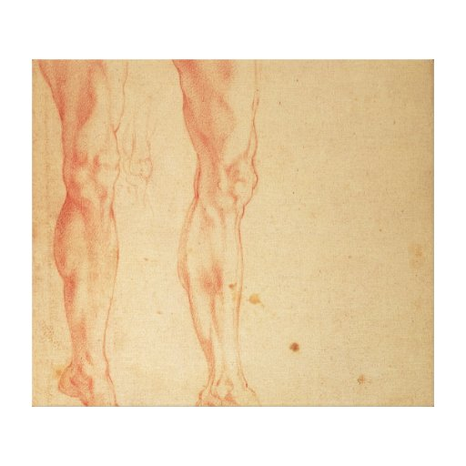 Studies of Legs and Arms Canvas Print
