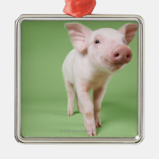 Studio Cut Out of a Piglet Standing Metal Ornament
