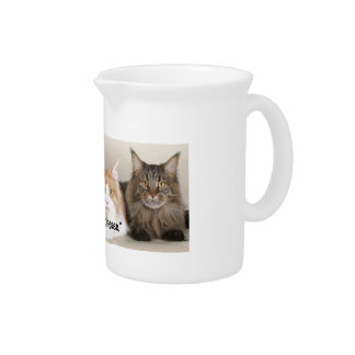 "Studio Photo - 3 Cats Saying ""Cheese"" Drink Pitcher"