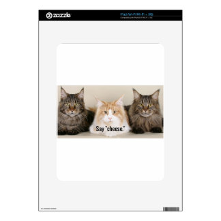 "Studio Photo - 3 Cats Saying ""Cheese"" iPad Skins"