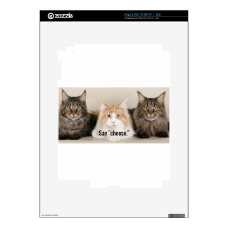 "Studio Photo - 3 Cats Saying ""Cheese"" Skins For iPad 2"