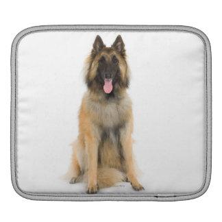 Studio portrait of Belgian shepherd dog Sleeve For iPads