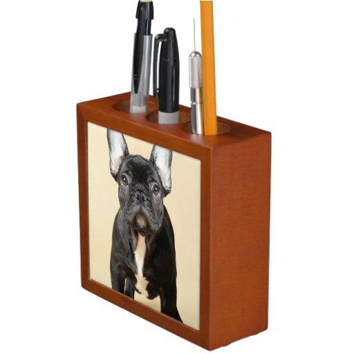Studio portrait of French bulldog puppy standing Pencil/Pen Holder