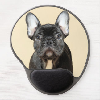 Studio portrait of French bulldog puppy standing Gel Mouse Pad