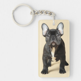 Studio portrait of French bulldog puppy standing Keychain