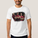 Studio portrait of male rugby team t shirt