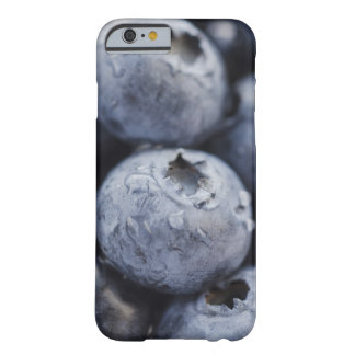 Studio shot of blueberries 2 barely there iPhone 6 case