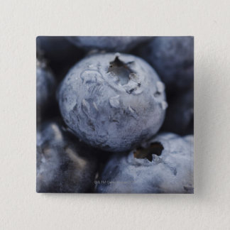 Studio shot of blueberries 2 button