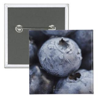Studio shot of blueberries 2 pinback buttons