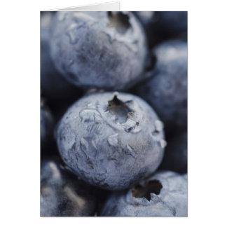 Studio shot of blueberries 2 card