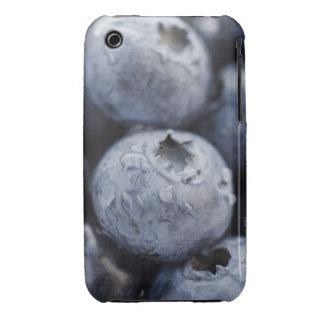 Studio shot of blueberries 2 iPhone 3 Case-Mate case