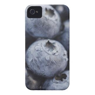 Studio shot of blueberries 2 iPhone 4 case