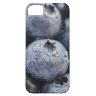 Studio shot of blueberries 2 iPhone SE/5/5s case