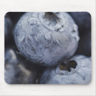 Studio shot of blueberries 2 mouse pad