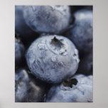 Studio shot of blueberries 2 poster
