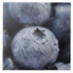 Studio shot of blueberries 2 tile