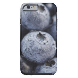 Studio shot of blueberries 2 tough iPhone 6 case