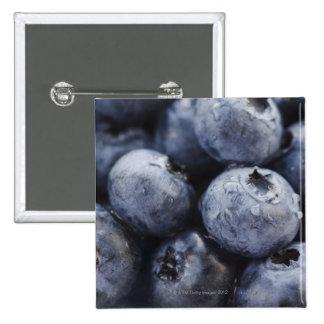 Studio shot of blueberries 3 pins