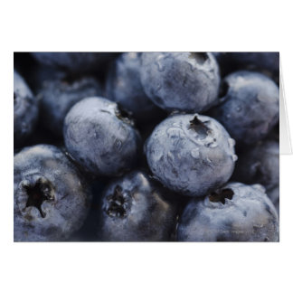 Studio shot of blueberries 3 card