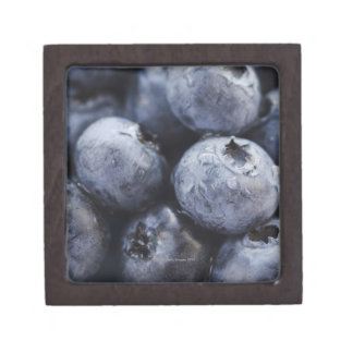 Studio shot of blueberries 3 gift box