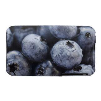 Studio shot of blueberries 3 iPhone 3 case
