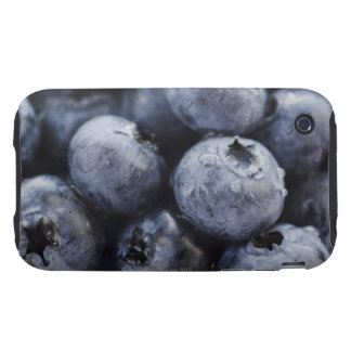 Studio shot of blueberries 3 iPhone 3 tough cover