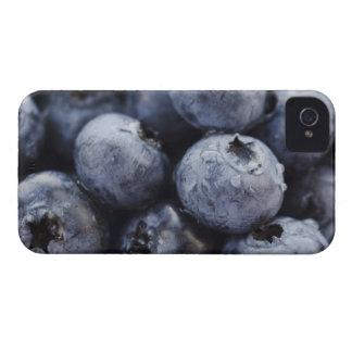 Studio shot of blueberries 3 iPhone 4 case